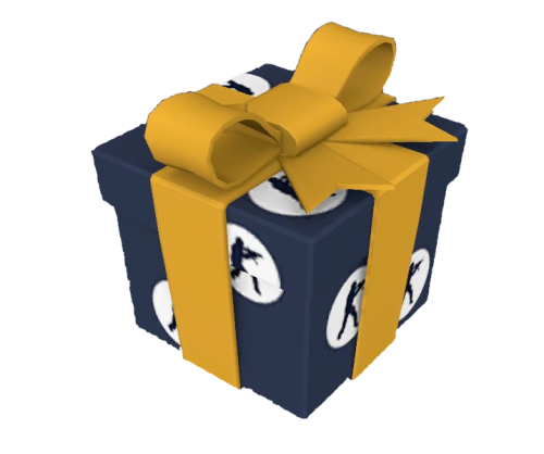 css_gift.png