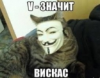 WHISKAS аватар